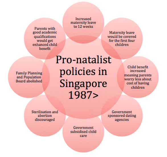 Image result for map singapore pro natalist policy